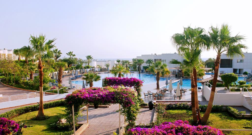 عروض شرم الشيخ, فندق ريف شرم